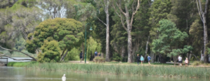 lake_guthridge