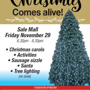 Sale Christmas Festival